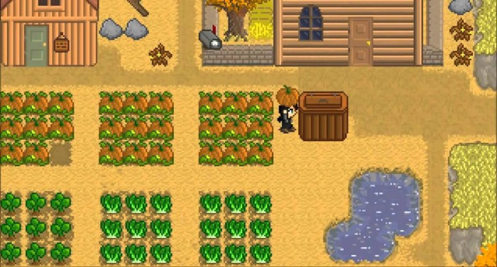 REVIEW: Stardew Valley | PLAY Zine - video games, reviews